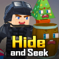 Hide and Seek Game