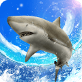 Wild Shark Fishing Game
