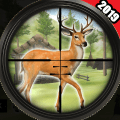 Jungle Animal Hunting 2019 Game